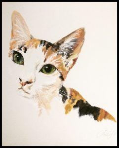 pintura gato madrid